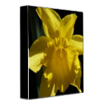 Perfect Daffodil 3 Ring Binder