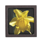 Perfect Daffodil Keepsake Box