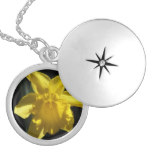 Perfect Daffodil Silver Plated Necklace