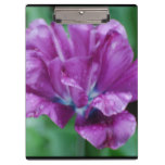 Perfectly Purple Parrot Tulip Clipboard