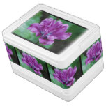 Perfectly Purple Parrot Tulip Drink Cooler