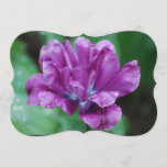 Perfectly Purple Parrot Tulip Invitation