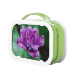 Perfectly Purple Parrot Tulip Lunch Box