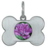 Perfectly Purple Parrot Tulip Pet Name Tag