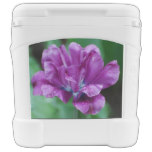 Perfectly Purple Parrot Tulip Rolling Cooler
