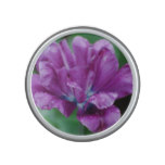 Perfectly Purple Parrot Tulip Speaker