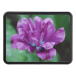 Perfectly Purple Parrot Tulip Trailer Hitch Cover