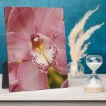 Pink Orchids  Plaque