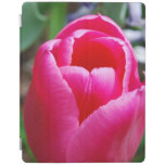 Pink Tulip iPad Smart Cover