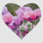 Poppy Field Heart Sticker