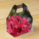 Pretty Blooming Red Rhododendron Blossom Favor Box