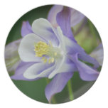 Pretty Columbine Flower Melamine Plate