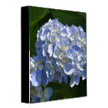 Pretty Flowering Hydrangea Flowers in Bloom 3 Ring Binder