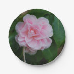 Pretty Pink Camelia Paper Plate