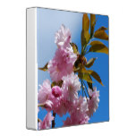 Pretty Pink Cherry Tree Binder