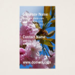 Pretty Pink Cherry Tree Business Card
