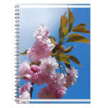 Pretty Pink Cherry Tree Notebook