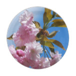 Pretty Pink Cherry Tree Paper Plate
