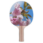 Pretty Pink Cherry Tree Ping-Pong Paddle