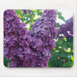Purple Lilacs Mouse Pad