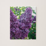 Purple Lilacs  Puzzle