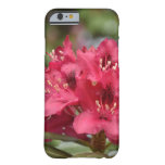 Red Rhododendron Bush in Bloom Barely There iPhone 6 Case