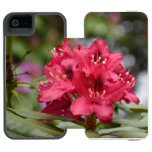 Red Rhododendron Bush in Bloom iPhone SE/5/5s Wallet Case
