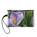 Striped Crocus Change Purse