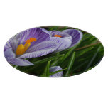 Striped Crocus Cutting Board