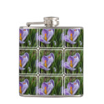 Striped Crocus Flask