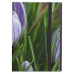 Striped Crocus iPad Air Case