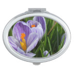 Striped Crocus Makeup Mirror