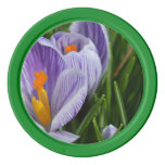 Striped Crocus Poker Chips