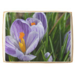 Striped Crocus Shortbread Cookie