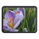 Striped Crocus Trailer Hitch Cover