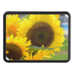 sunflower-132.jpg tow hitch cover