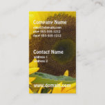 Sunflowers in Bloom Business Card
