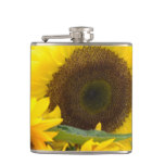Sunflowers in Bloom Hip Flask