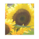 Sunflowers in Bloom Notepad
