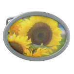 Sunflowers in Bloom Oval Belt Buckle