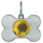 Sunflowers in Bloom Pet ID Tag