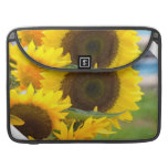 Sunflowers in Bloom Sleeve For MacBook Pro