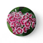Sweet William Flowers Round Button