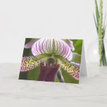 Unique Orchid Greeting Card