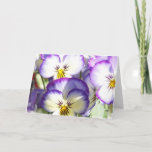 White and Purple Violas Greeting Card