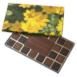 Yellow Coreopsis Assorted Chocolates