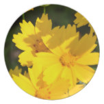 Yellow Coreopsis Dinner Plate