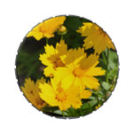 Yellow Coreopsis Jelly Belly Candy Tins