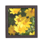 Yellow Coreopsis Keepsake Box