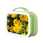 Yellow Coreopsis Lunch Box